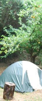 Posti tenda